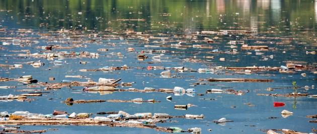 A poluição de rios e lagos causadas por esgotos, agrotóxicos e poluentes lançado no leito dos rios