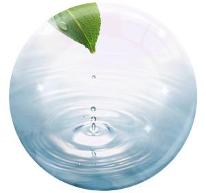 Dia Mundial da Água, 22 de Março e Declaração de Direitos