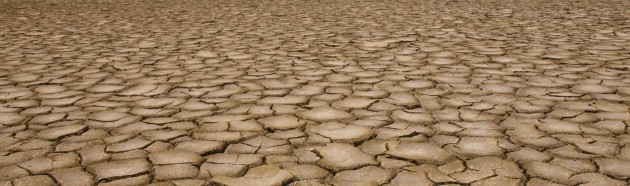 Tipos de solos: arenoso, argiloso, árido, orgânico, entre outros