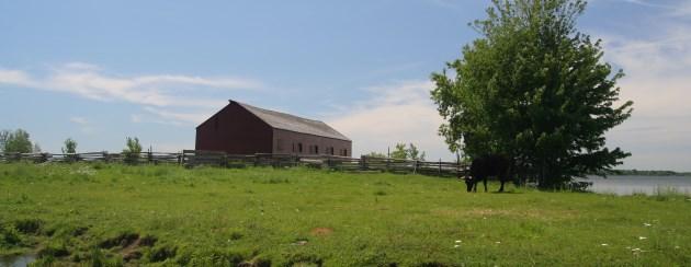educação no campo ou rural